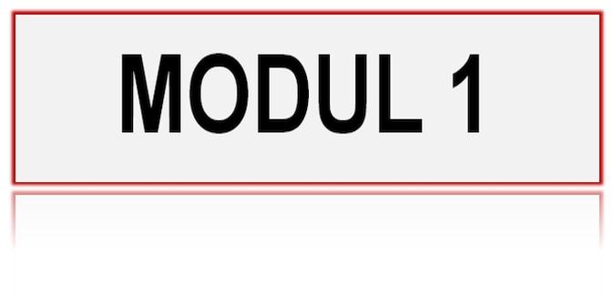 Provjera znanja MODUL 1 – 20.03.2021.